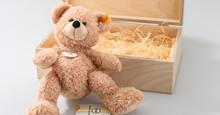 Teddy aus dem Online-Shop